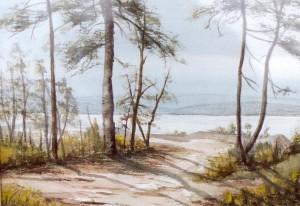 Mom painted this watercolor at Wasa Lake, BC
